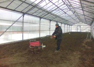 Петр Артемов тщательно культивирует почву перед посадкой.