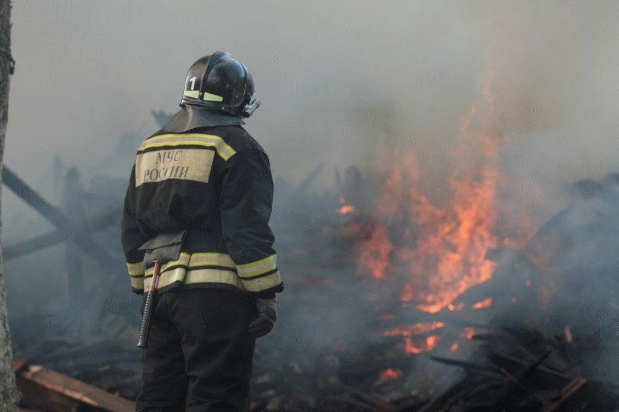 Январские пожары